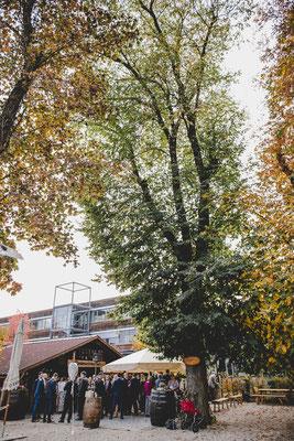 Der Kirchheimer Hirschgarten - Biergarten unter Kastanien - 18