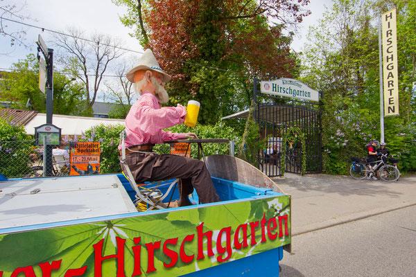 Der Kirchheimer Hirschgarten - Biergarten unter Kastanien - 6
