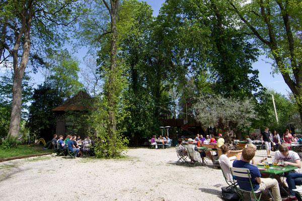 Der Kirchheimer Hirschgarten - Biergarten unter Kastanien - 8