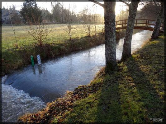 Enfin, février 2017, une vrai remontée des débits sur la Louyre après 6 mois d'étiage.