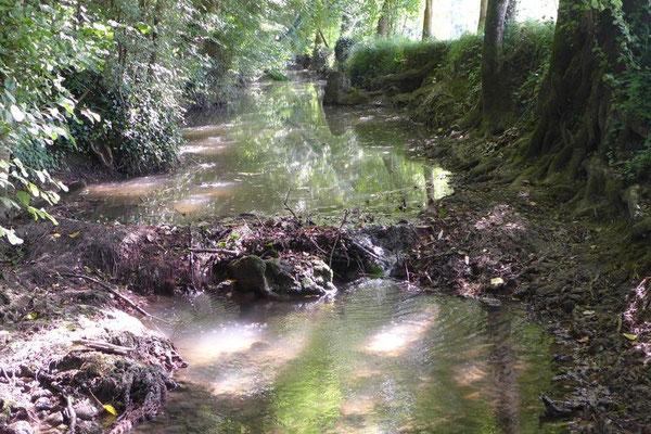 La Conne de Bergerac au lieu dit pont de Bazet