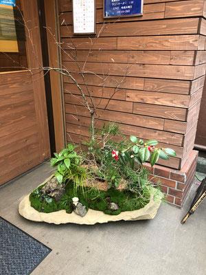 武蔵新城駅 居酒屋環さんの鉢庭