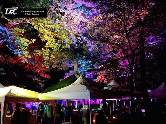 Hochzeits DJ auf dem Grillplatz der Waldfreunde Duisdorf. Aufwändige Illumination der Baumkronen mittels LED Scheinwerfern