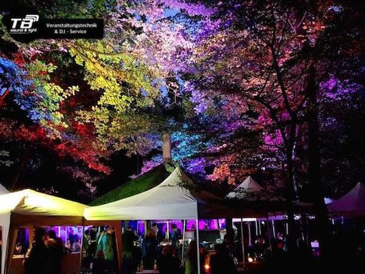 Märchenhafte Hochzeit mit illuminierten Baumkronen in Duisdorf (Grillplatz Waldfreunde)