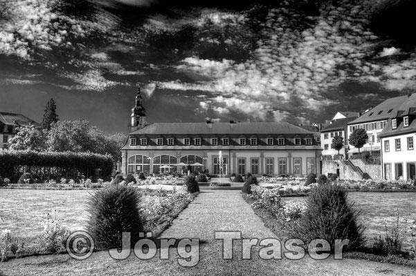 Schloss Erbach Odenwald