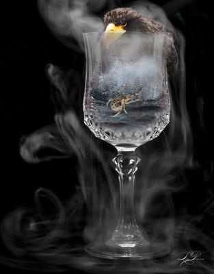 Spinne im Glas