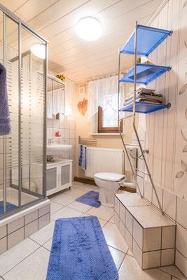 Ein Bad mit Dusche und WC, Handtüchern, etc.