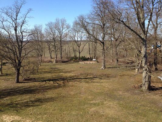 Frühjahr 2013 | Blick in den Park