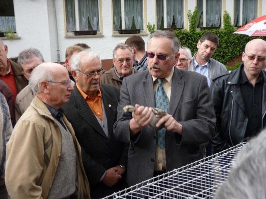 Jürgen Weichold referiert über die genetischen Grundlagen der Farbvererbung beim Farbschlag blaufahl-sulphurgeschuppt.