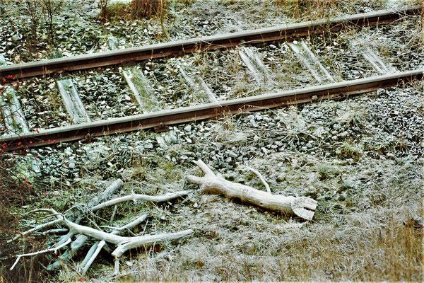 Dez. 1989 Schienen ins Nichts