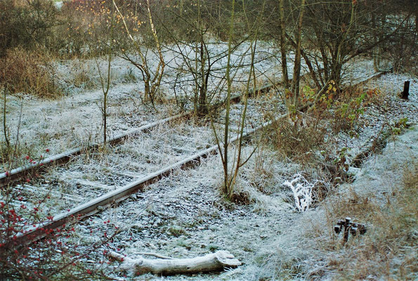 Dez. 1989 Die letzten Meter bis zur DDR-Grenze