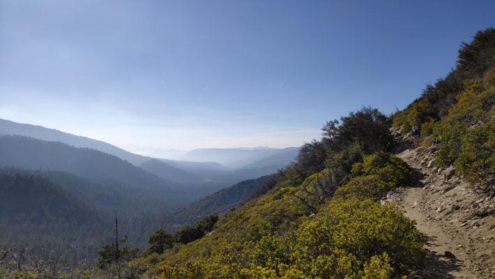 Abendstimmung im San Bernardino National Forest
