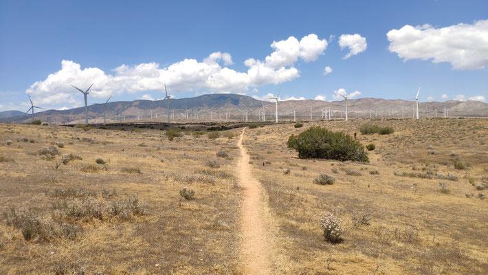 Wir nähern uns der Manzana Wind Farm