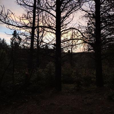 21. Mai: Sonnenaufgang, 5 Uhr