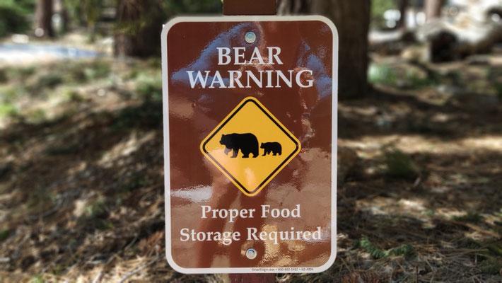 Keine Bären gesehen ...