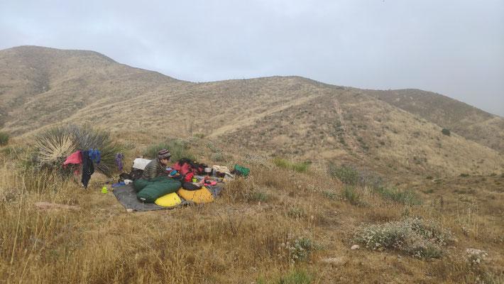 14. Mai: Noch ca. 12 km bis Agua Dulce