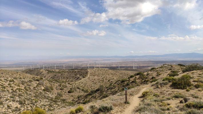 Wir verlassen die Windfarm und die Wüste