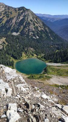 Hopkins Lake - nochmal baden vor dem Grenzübertritt