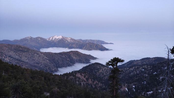 Aussicht vom Mount Baden-Powell