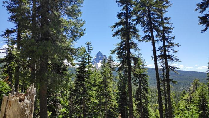 Mount Thielsen und Howlock Trail