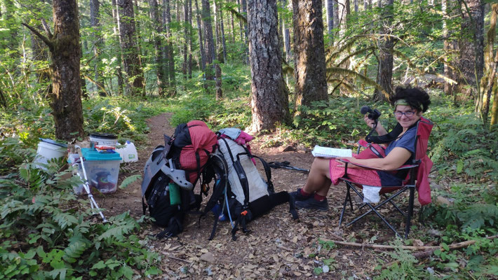 Trailmagic: Eine Hikerbox im Wald, mit Register zum eintragen