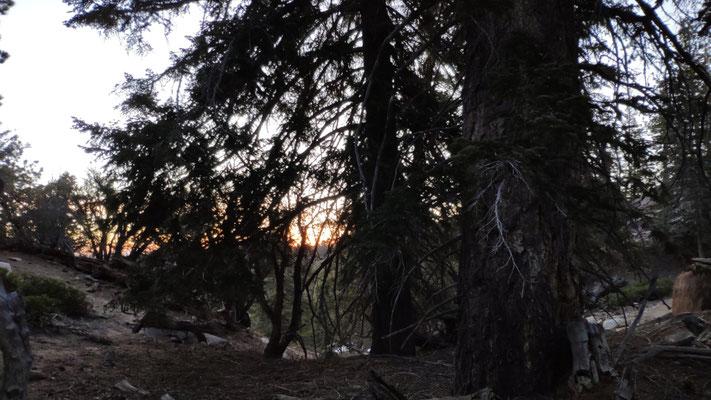 Sonnenaufgang, gegen 6 Uhr