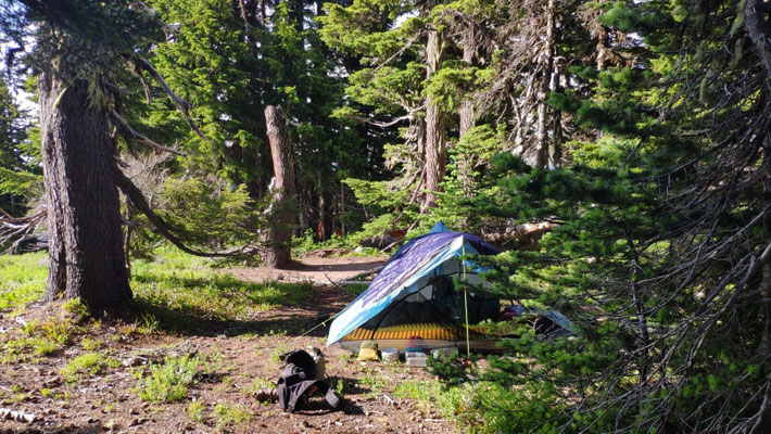 Zeltplatz oberhalb der Timberline Lodge