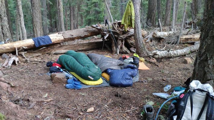 Unser 5-Sterne-Übernachtungsplatz im Wald