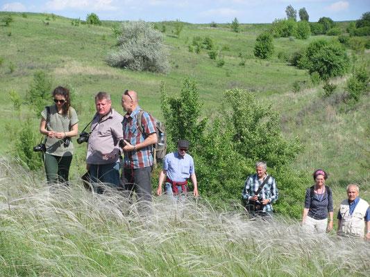 Exkursion in die ukrainische Federgras-Steppe (Foto: Anastasia Holubenko)