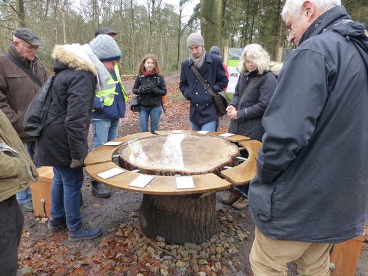 Der Baumscheiben-Tisch ist eines von zahlreichen Erlebniselementen auf dem Wald-Klima-Lehrpfad in der Hohen Ward (Foto: Joachim Teetz)