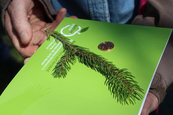 Der erste Baum des Jahres, die Stiel-Eiche auf dem 2 Cent-Stück, neben einem Fichtenzweig, dem aktuellen Baum des Jahres