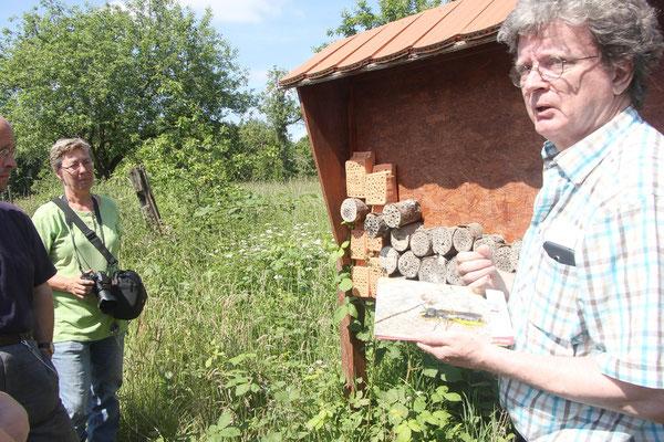 """Erläuterungen zum """"Bienenhotel"""" , links Karin Rietmann von der AG Obstwiesenschutz, rechts Joachim Eberhardt von der AG Bienen (Foto: Viola Hütte)"""