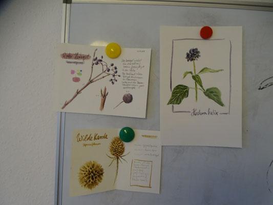 Einige Motive und Tipps, die Kursleiterin Gesche Santen vorbereitet hatte (Foto: Felizia Paltrinieri)