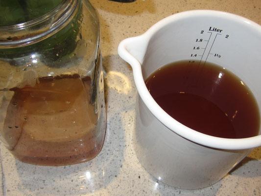 pro liter ca. 100ml von dem fertigen kombucha ins saubere glas geben und pilz wieder einlegen; auf ein neues ...