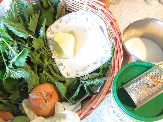 zutaten: junge brennnesseltriebe; butter; gemüsebrühe (suppenwürze); muskatnuss; zwiebel; milch