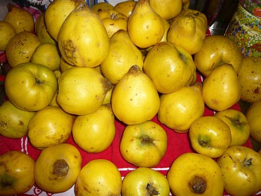 die reifen früchte mit einem tuch fest abreiben - belag