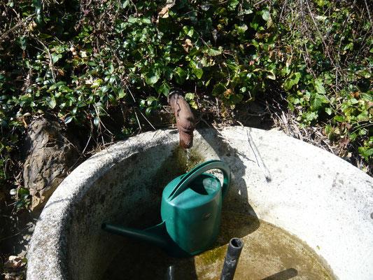 eigenes brunnenwasser
