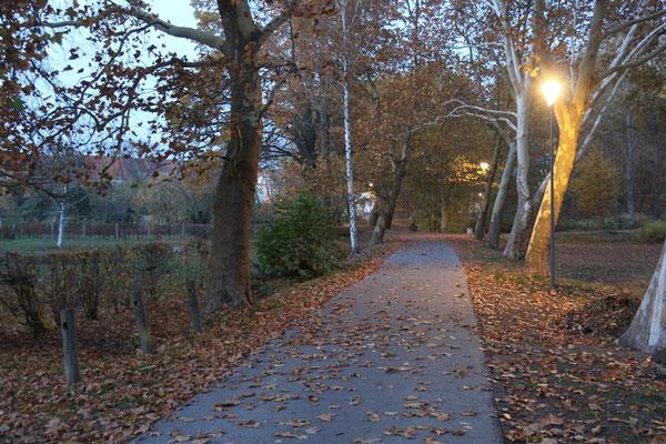 Der Kurpark von Herzberg