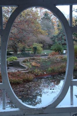 Impressionen aus dem Botanischen Garten in Herzberg