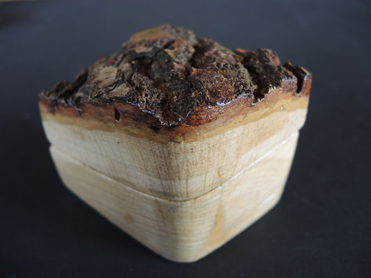 aus einem einzige Holzklotz mit Rinde entstanden