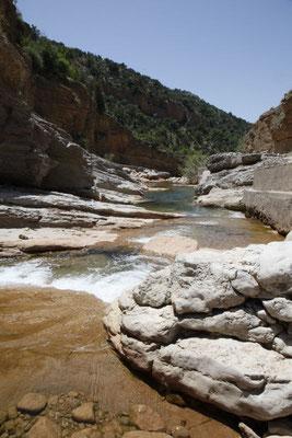 Der Bergbach trägt nicht mehr al zuviel Wasser
