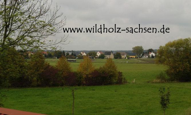 Blick aufs nahe Dorf Weidenhain
