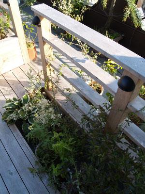フェンスの足元には植栽が入るスペースを設けました。