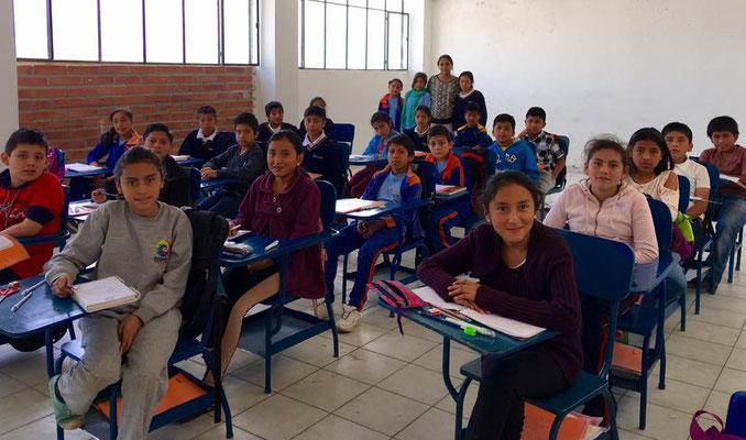 8. Klasse Schule Educare