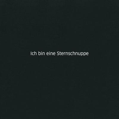 Ich bin eine Sternschnuppe. ichrondelle, was ich bin, Gisela Rott, Lebenskunst-edition, Künstlerhof Lavesum