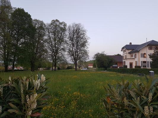 Beaulieupark