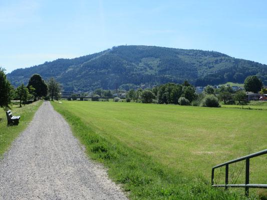 Kinzigdamm Richtung Steinach