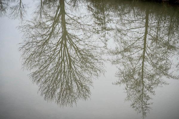 die Natur ruht