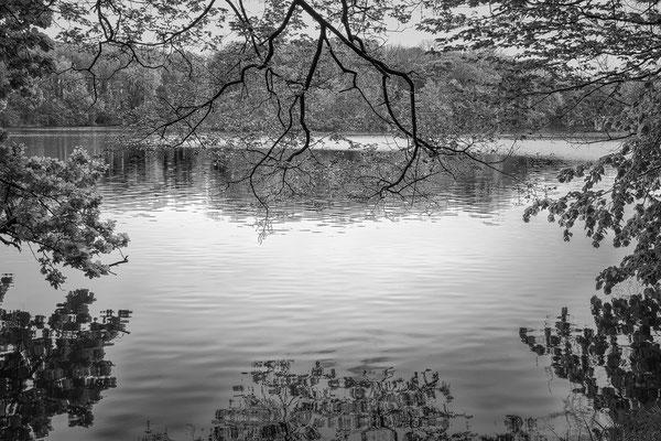 framed Schlosspark Laxenburg © c.rebl