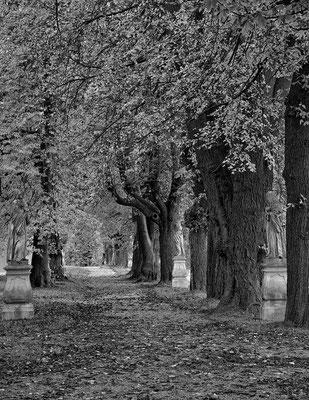 Heiligenkreuz/NÖ © c.rebl